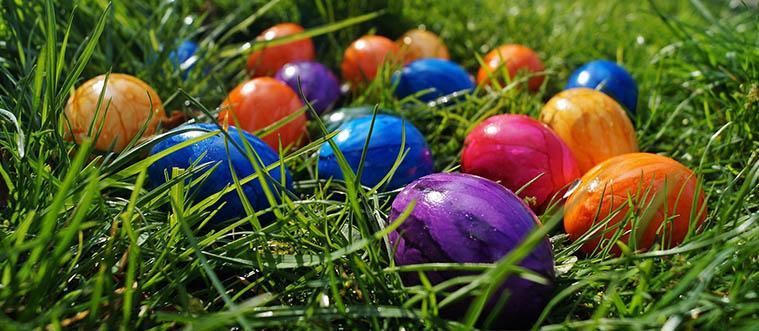 Jaro je tu zase zpátky a my přejeme veselé svátky.