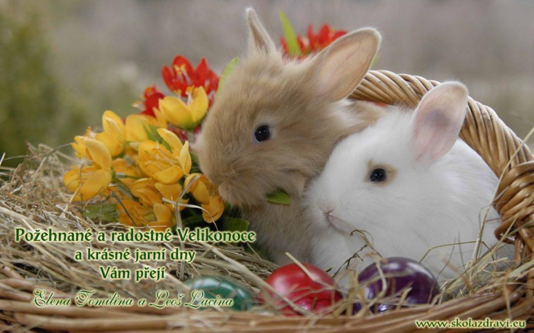 Veselé Velikonoce – přání